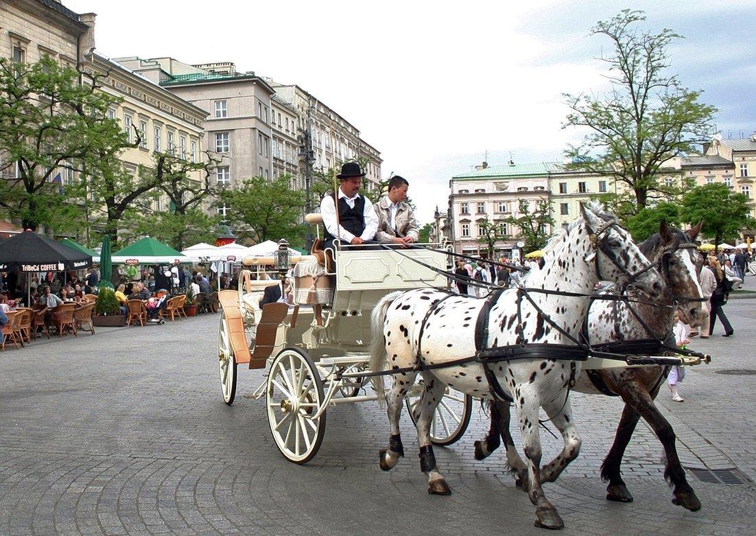 Nähtävyyksi voi ihailla rauhassa hevosrattaiden kyydistä.