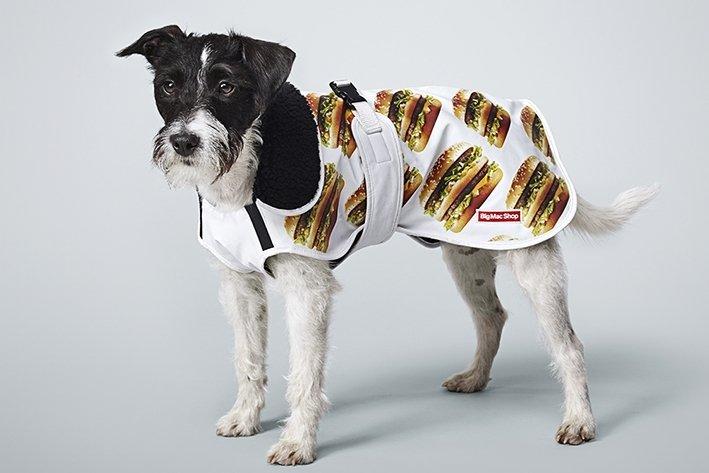 """""""Myös koiran voi pukea Big Mac -kuosiin, sillä verkkokaupassa myydään koiran takkeja kolmessa eri koossa. Jatkossa voikin bongata koiria, joilla on päällään Big Mac -sadetakit, vinkkaa McDonald'sin markkinointijohtaja Christoffer Rönnblad."""